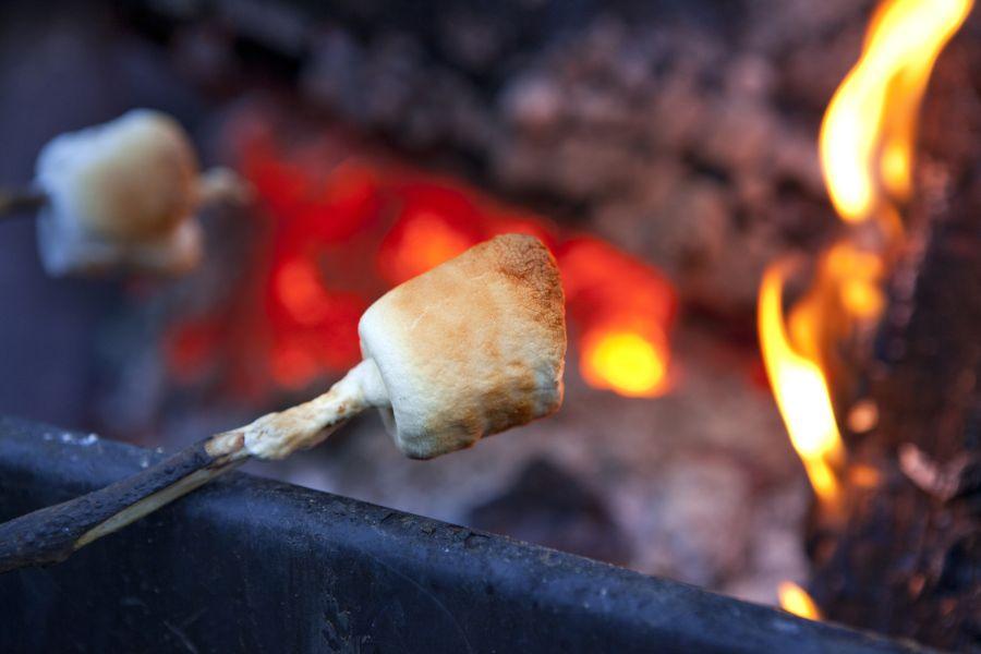 campdotcom - campfire-camping