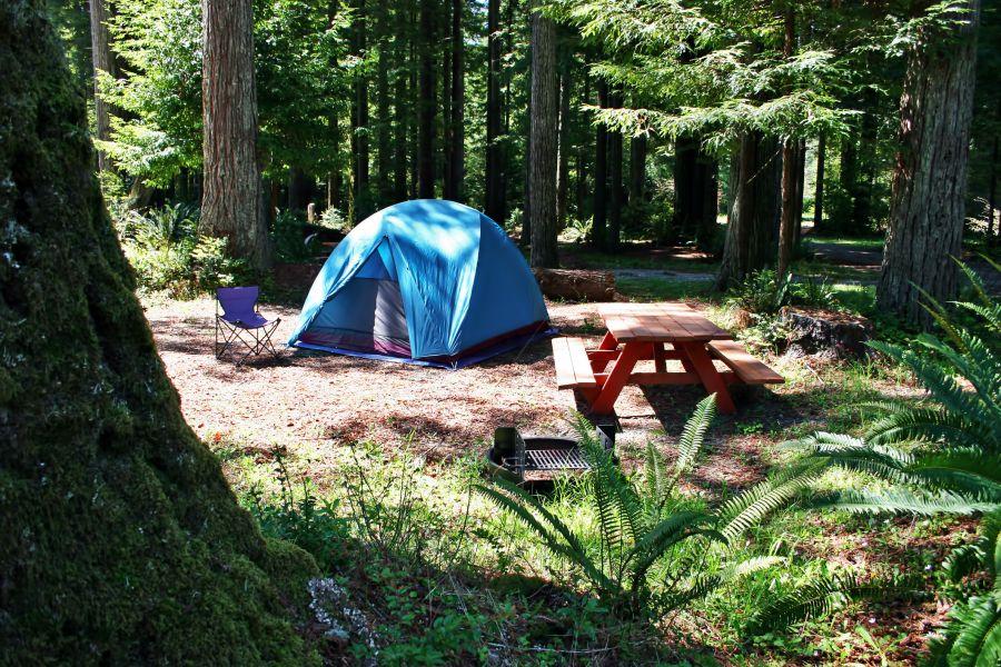 best campsite campdotcom